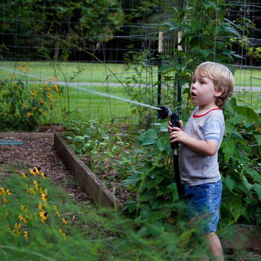 Misti's gardener son
