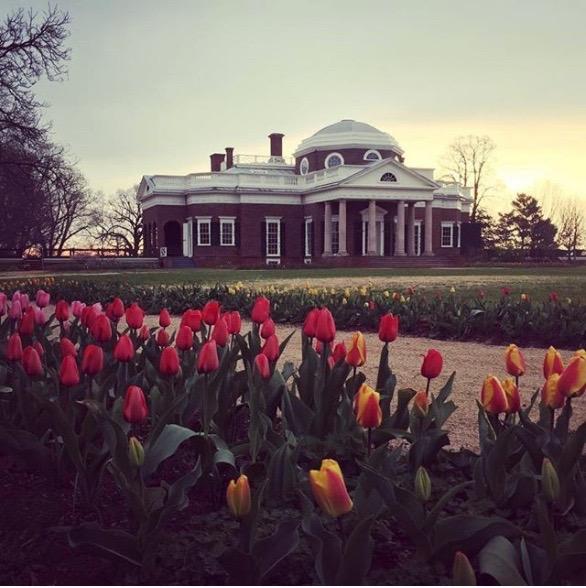Spring at Monticello 3