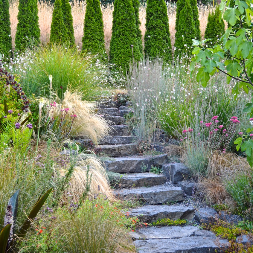 Hillside meadow stairs