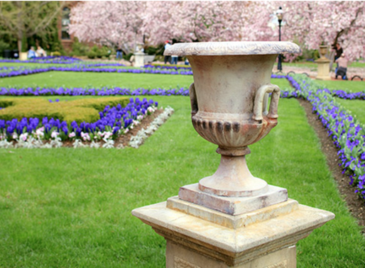 CULTIVATING AMERICA - THE SMITHSONIAN GARDENS