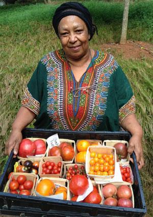 Ira with Tomato trials