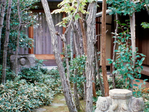 """CUTTING BACK: MY APPRENTICESHIP IN THE GARDENS OF KYOTO"""