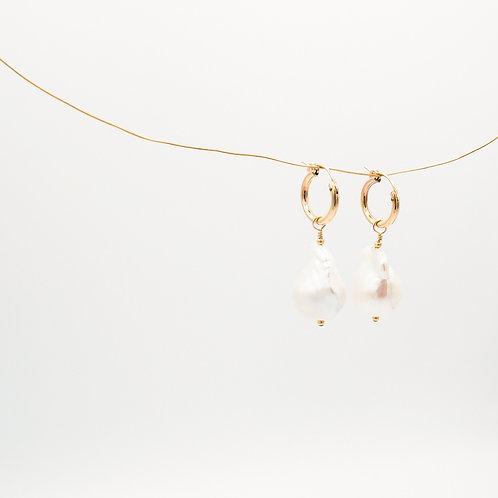 Créoles Perles Maximales