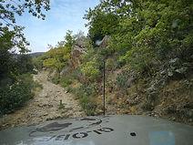 Languedoc106.jpg