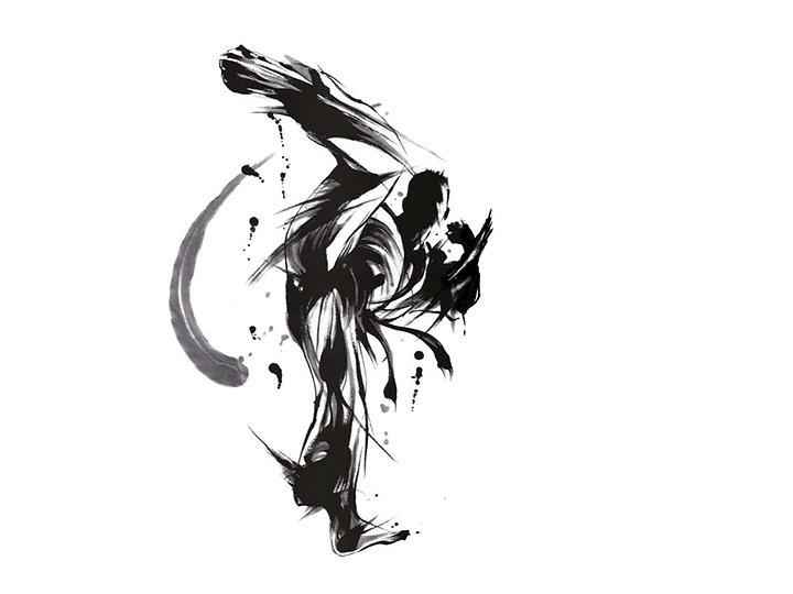 Karateka6.jpg