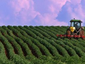Tuyển lao động làm việc tại nông trại Canada