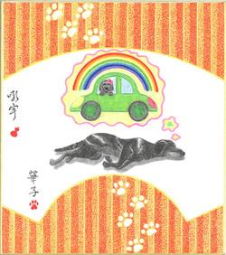夢はドライブ