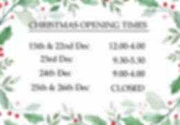HOLLY OPENING TIMES HORIZONTAL cropped.j