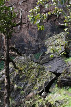 bottom Queen Mary Falls 1.jpg
