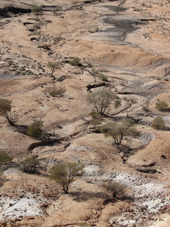 painted desert.JPG