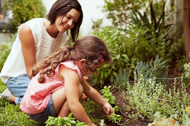 Mother's Day Birthday Garden