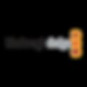 Blackmagic-Design-Logo-e1491799080531.pn