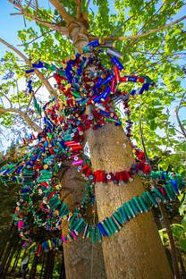 TREE (DEATH) - MARGARET ROLEKE-7004.jpg