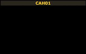 cah01
