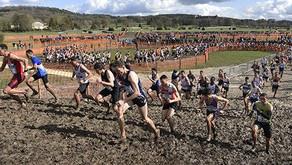 🚨 Championnats de France de cross-country : La compétition est annulée !