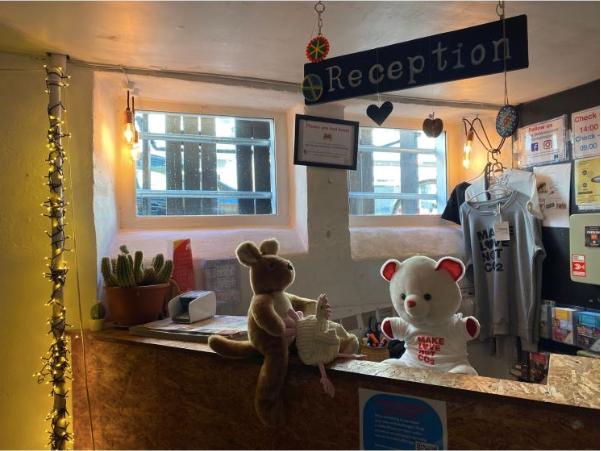 Teddy Bear Hostel Opening