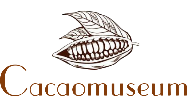 cacao-museum-amsterdam-tours-that-matter