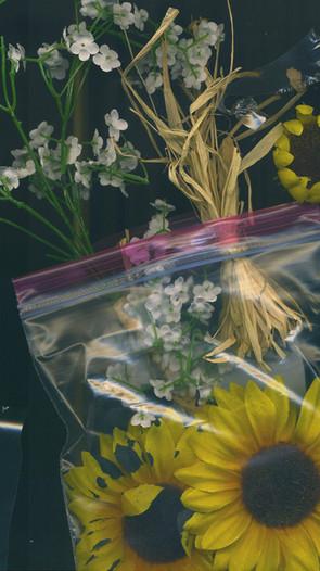 Oppostition Frame 01