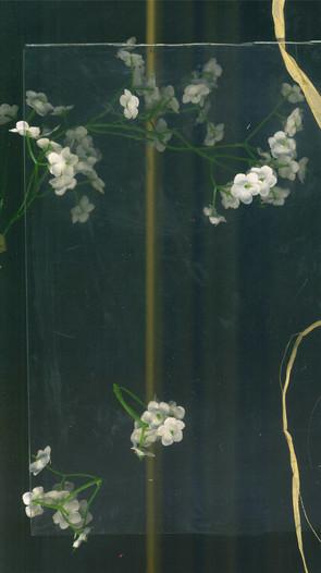 Oppostition Frame 02