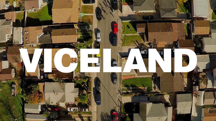Viceland Visual Brief 01