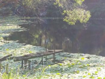 Mindfulness - A simple, beautiful practice