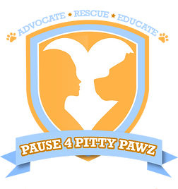 PITTYPAWZ1shadow_edited.png
