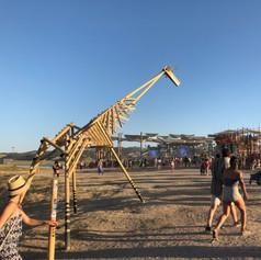 Zoo Fun Giraffes