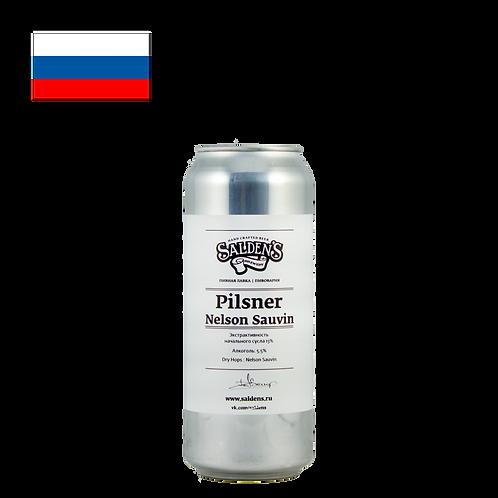 Salden's Pilsner Nelson Sauvin