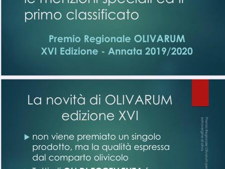 Olivarum 2019/2020