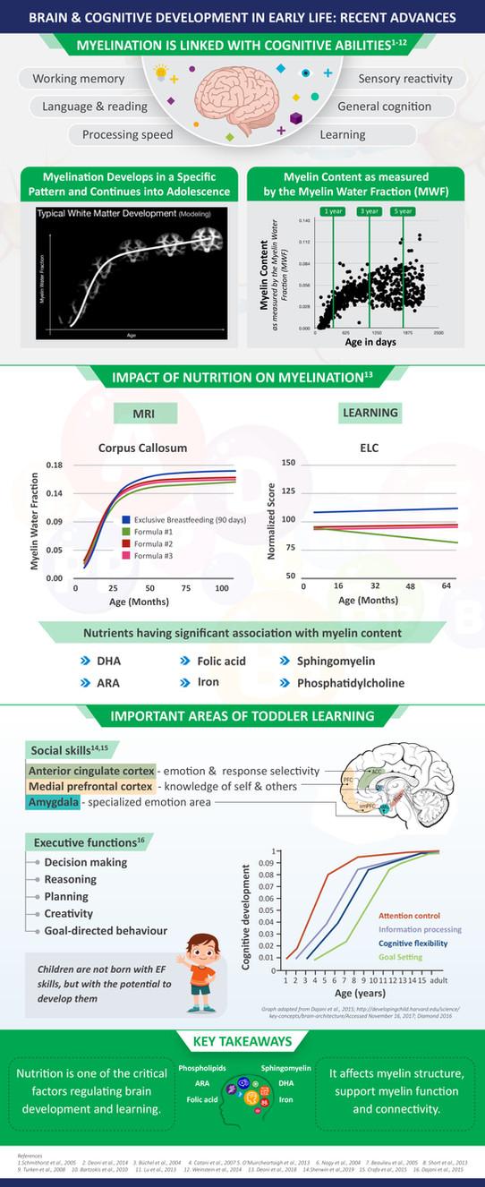 Nestle brain Infographic-13082020-V2.jpg