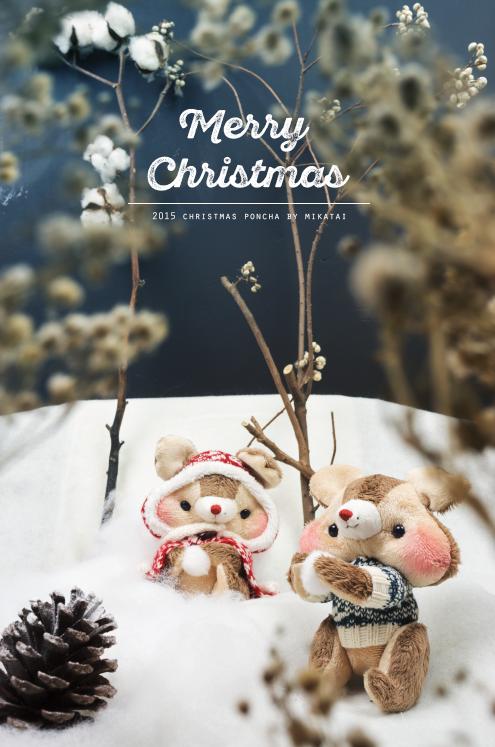 2015 Christmas poncha