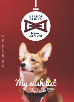 Orange Blinks A/w look book cover
