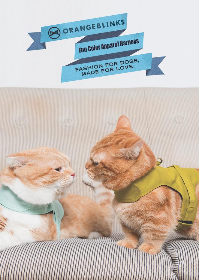 Orange Blinks 2015S/S post card