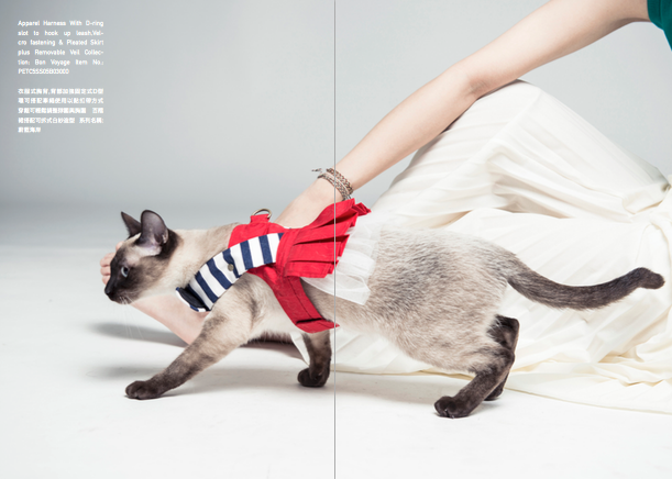 Orange Blinks pets fashion 2015s/s