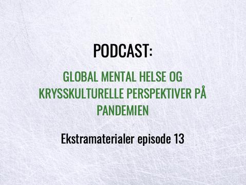 Ekstramateriale - episode 13