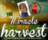 _Miracle Harvest.png