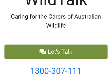 WildTalk is LIVE!