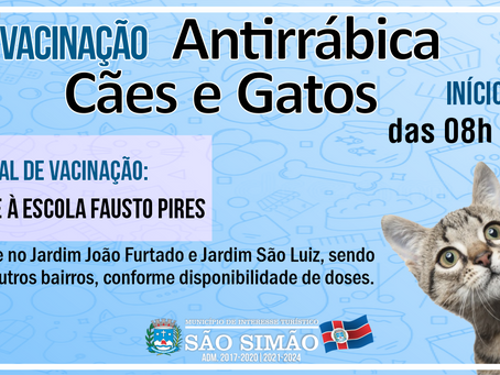 Vacinação Antirrábica - Cães e Gatos.