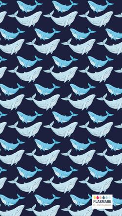 balene sfondo-01