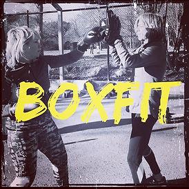 BoxFIT.jpg