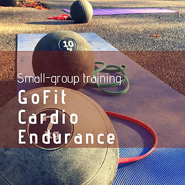 GoFIt Cardio April 2019.png