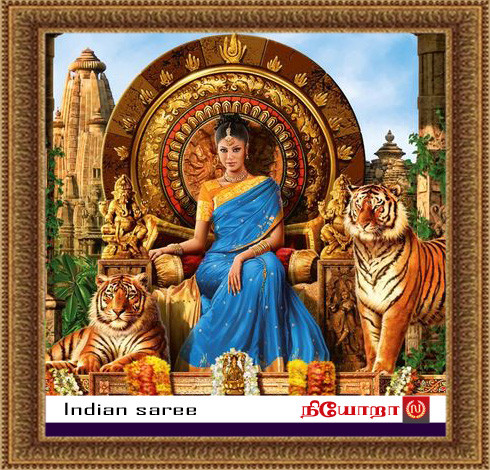Gallery-7-Indian Saree copy.jpg