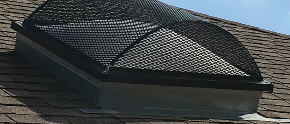 Golden Spread Roofing   Skylights