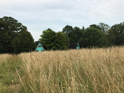 View from The Flower Meadow