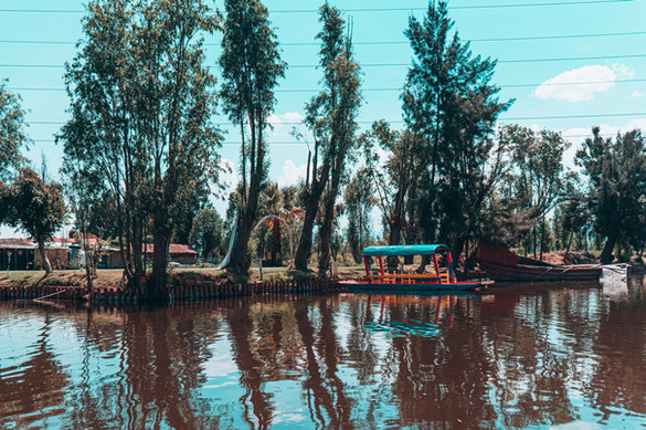 On one of our Xochimilco Tours