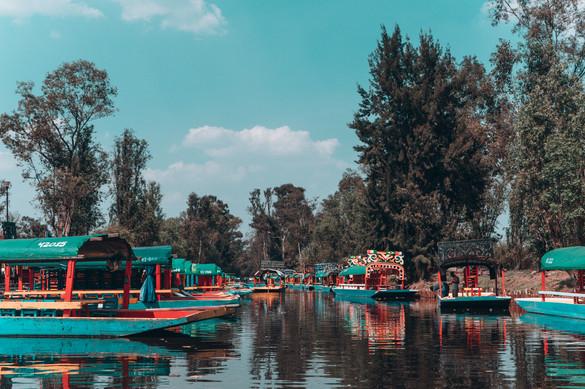 The unique mix of colours in Xochimilco