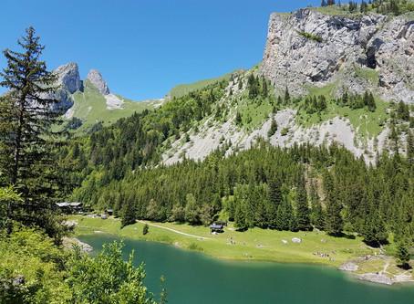 Que hacer en la Suiza Francesa