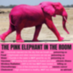 IS THERE A PINK ELEPHANT IN THE ROOM_.pn
