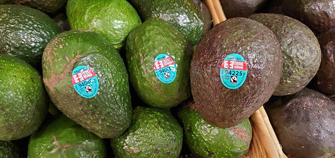 Fair trade avocado.jpg
