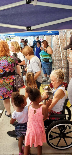 Ice Cream Social & Rescue Dog Adoption